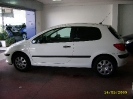 Peugeot 307 - 3 porte Panther 5